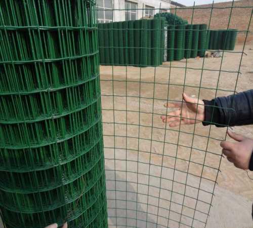 河北钢丝围栏网安装-绿色铁丝网批发-安平县石誉丝网制造有限公司